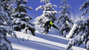 Snowboard Powder